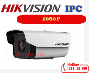 Camera ip 1080P Hikvision DS-2CD1221-I3