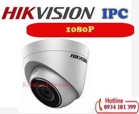 Camera ip 1080P Hikvision DS-2CD1321-I
